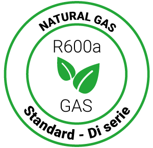 Gas naturale R600a